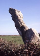 Cornish-upright-2
