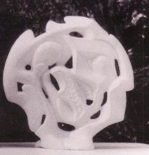 Janus-disk-1